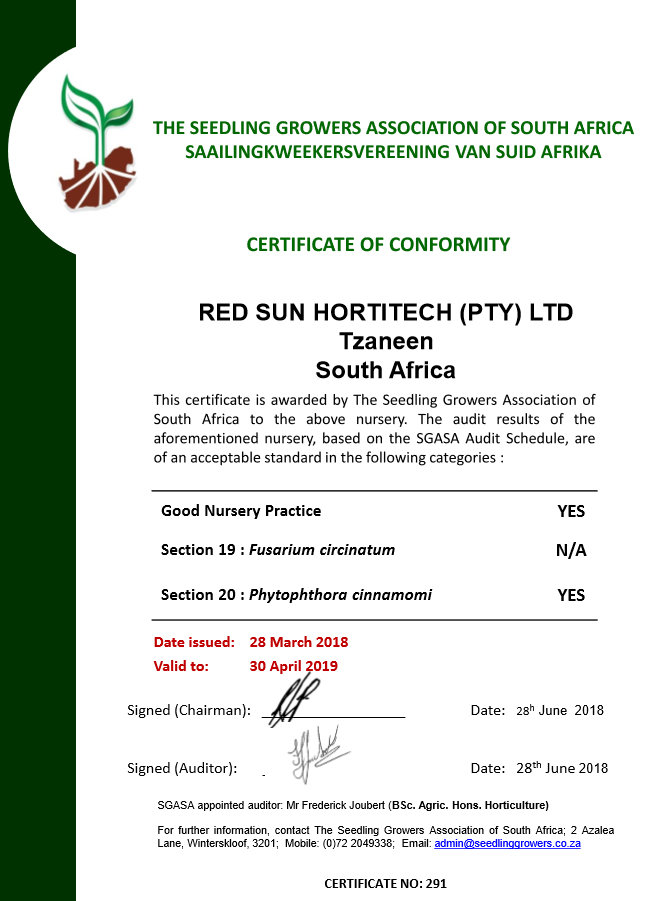 RedSun Hortitech Nursery | Tzaneen , Limpopo certified