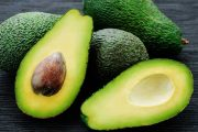 RedSun Hortitech Nursery | Tzaneen , Limpopo | Avocado Trees